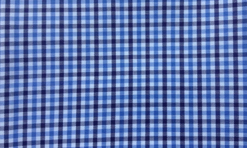 Blue & Blue Checkered
