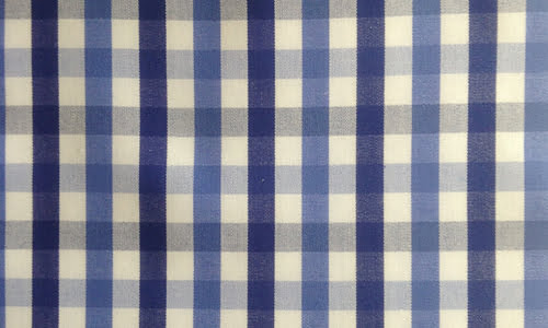 Blue Bold Checked
