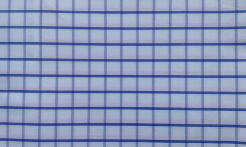 Blue Checked