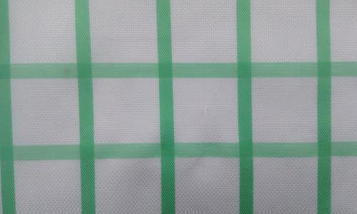Green Window Checked