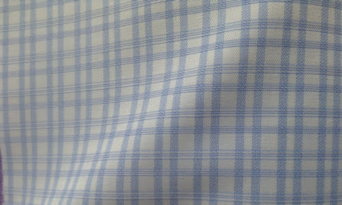 Thin Blue Checked